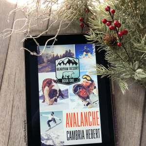 Avalanche by Cambria Hebert