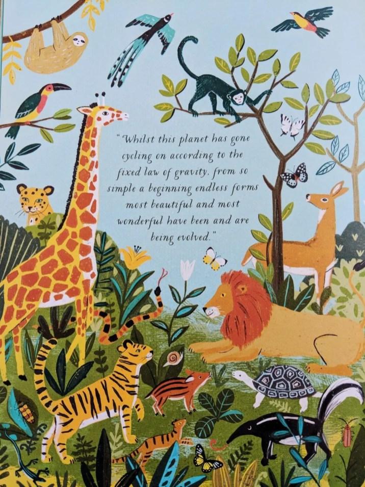 Illustration from On the Origin of Species by Sabina Radeva