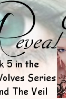 Cover Reveal! Beyond the Veil (The Grey Wolves #5) by Quinn Loftis