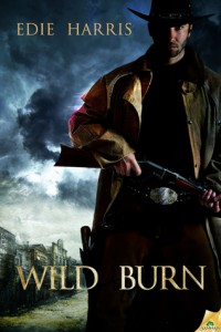 Cover for Wild Burn by Edie Harris