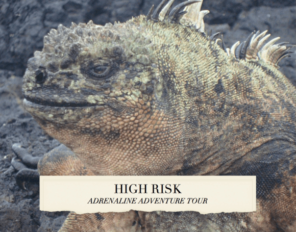 HIGH RISK TOUR_Galapagos-1