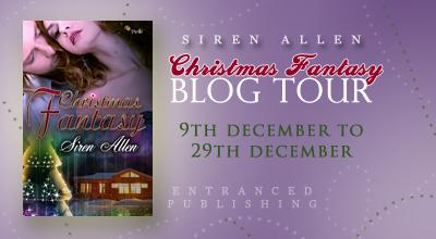 Christmas Fantasy Tour Banner