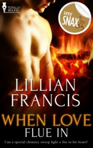 Mini Review – When Love Flue In by Lillian Francis