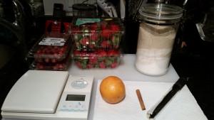 Scale, strawberries, cranberries, sugar, orange, cinnamon, vanilla bean