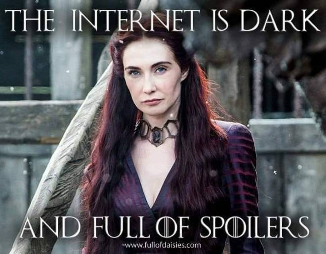 Image may contain: 1 person, text that says 'THE INTERNET IS DARK AND FULL OF SPOILERS www.fullofdaisies.com'