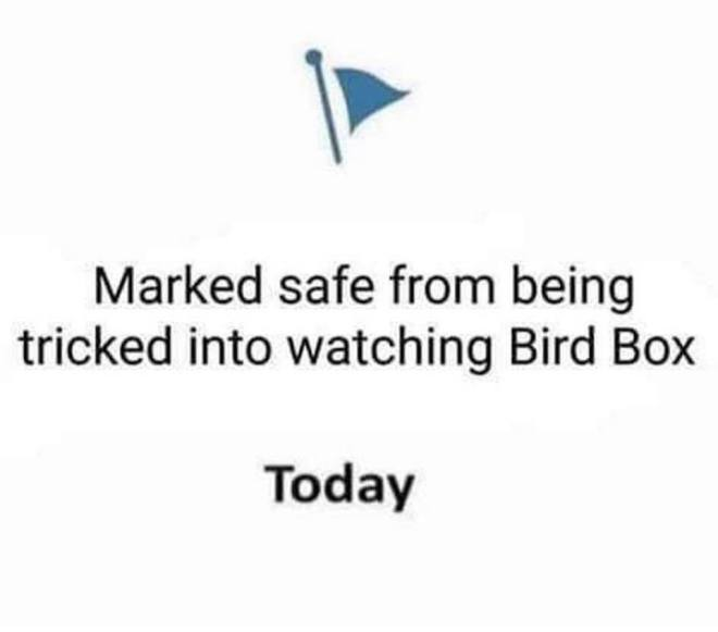 Image may contain: text that says 'Marked safe from being tricked into watching Bird Box Today'