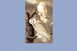 Owls and Other Fantasies: Poems and Essays by Mary Oliver