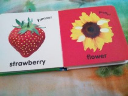 board book for toddler
