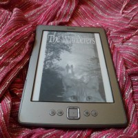 New Read: The Wanderers