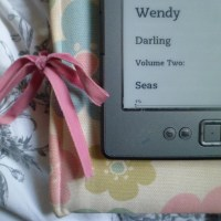 New Read: Wendy Darling, Volume 2: Seas