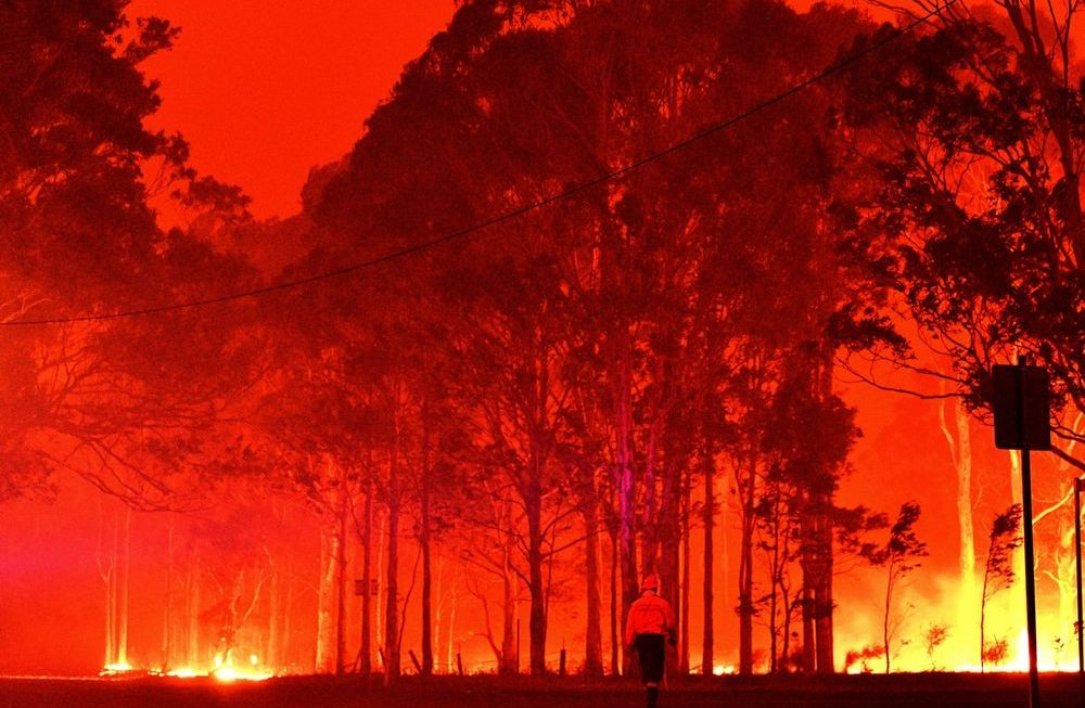 Students can offer help to Australian fire relief efforts