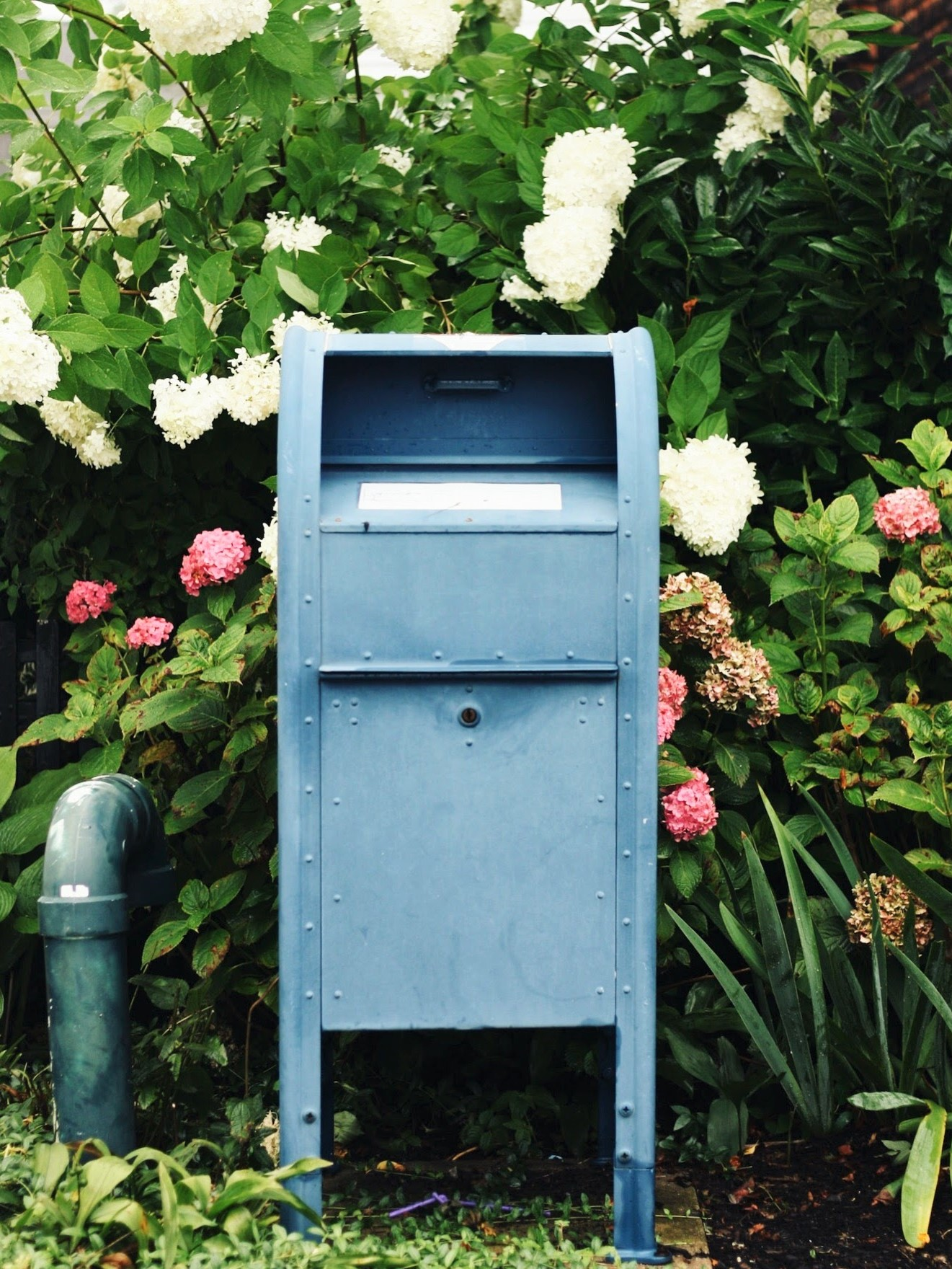 ptown mailbox and flowers