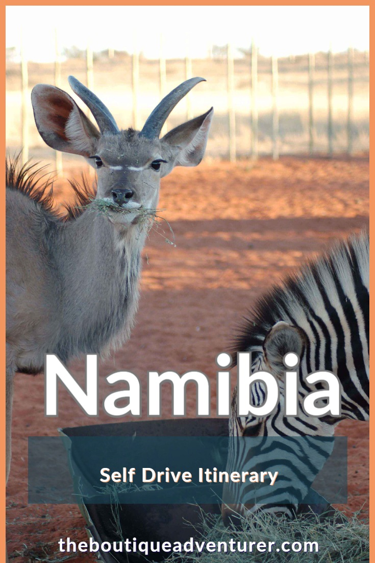 Heading to Namibia? Here is a 10 night Self Drive Namibia Itinerary that covers the Kalahari desert, Fish River Canyon, Sossusvlei and Swakopmund #namibia