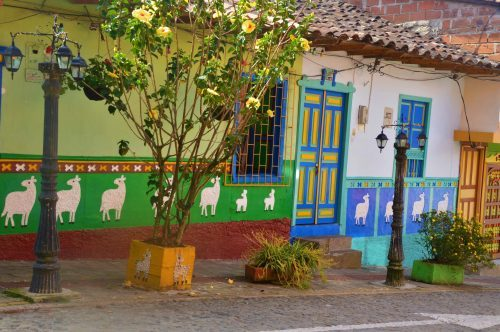 brightly coloured houses and tree on street guatape