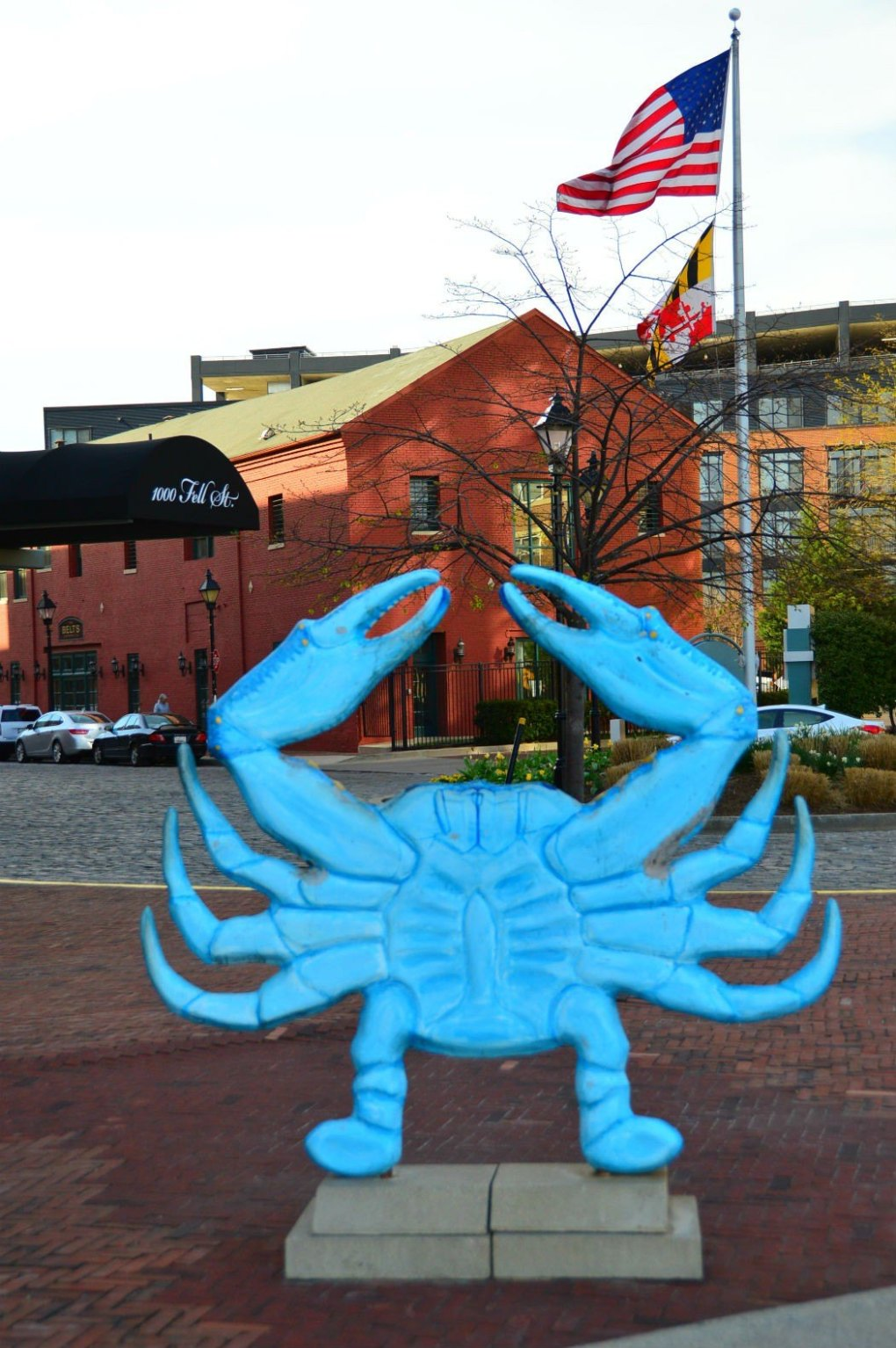 fell's point blue crab