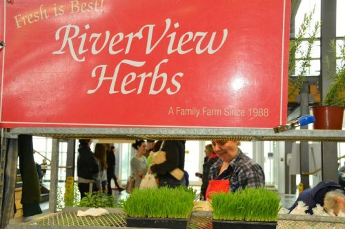 riverview herbs