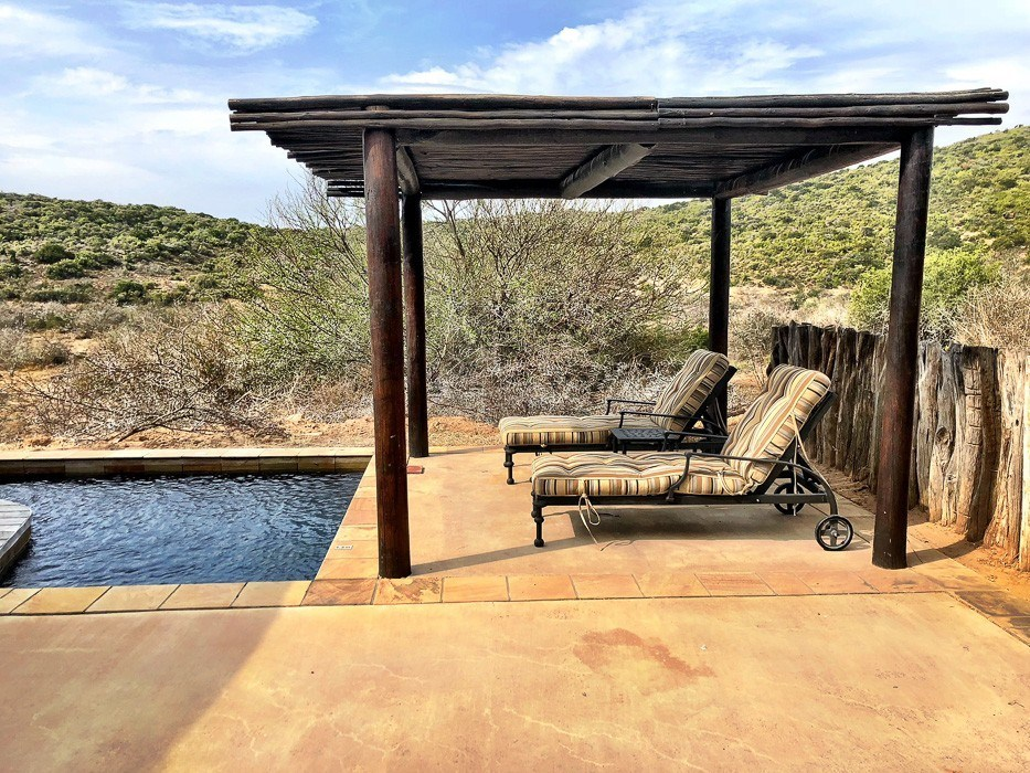 back terrace with sunloungers and cover and infinity pool at Kwandwe