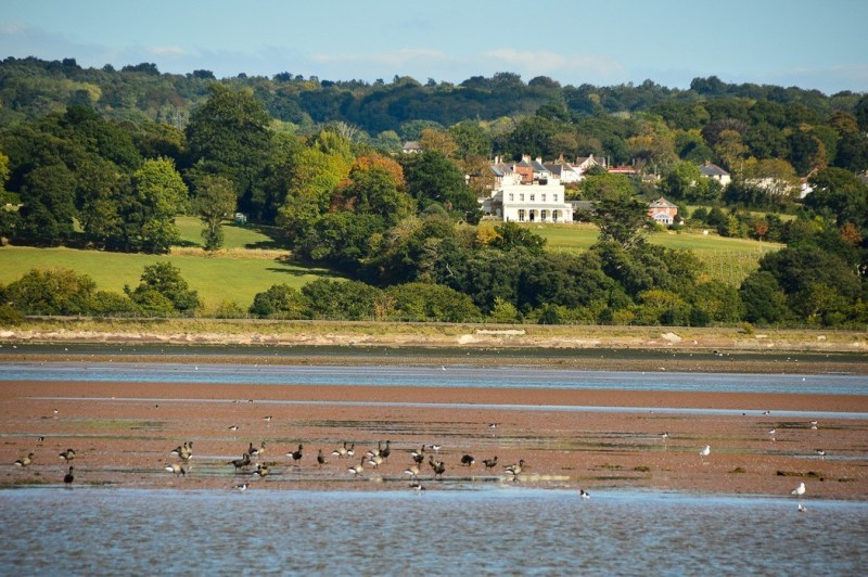 exmouthboattrips