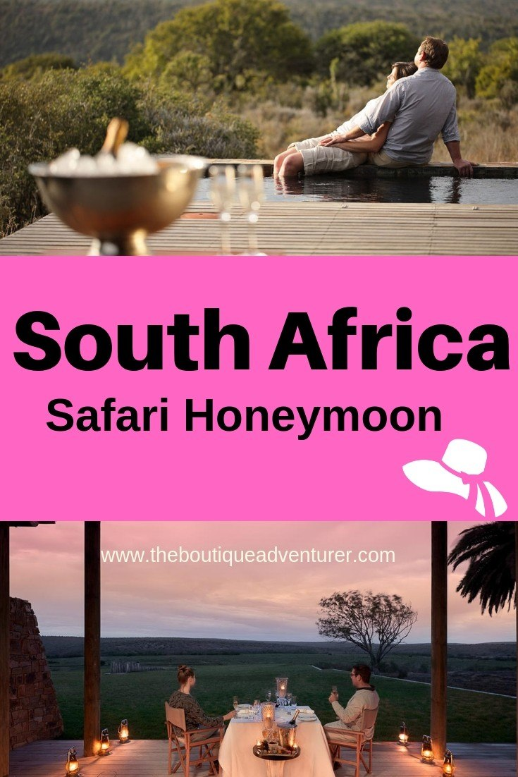 Thinking about a Safari Honeymoon? South Africa is a great option for many reasons - and it has the #1 Safari Experience in Africa! #southafrica #honeymoon #safarihoneymoon Click here for more