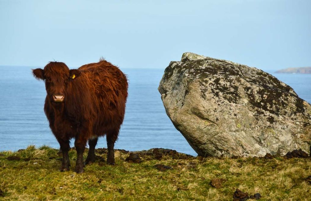 things to see in scottish highlands