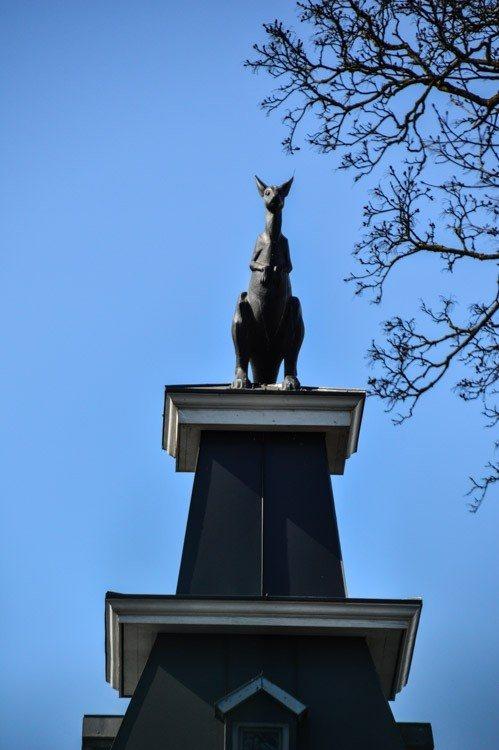 Kangaroo Sculpture in Riga