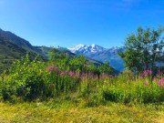 Where to Experience the best of Summer in Switzerland - 20 Reasons to Head to Lovely Verbier!
