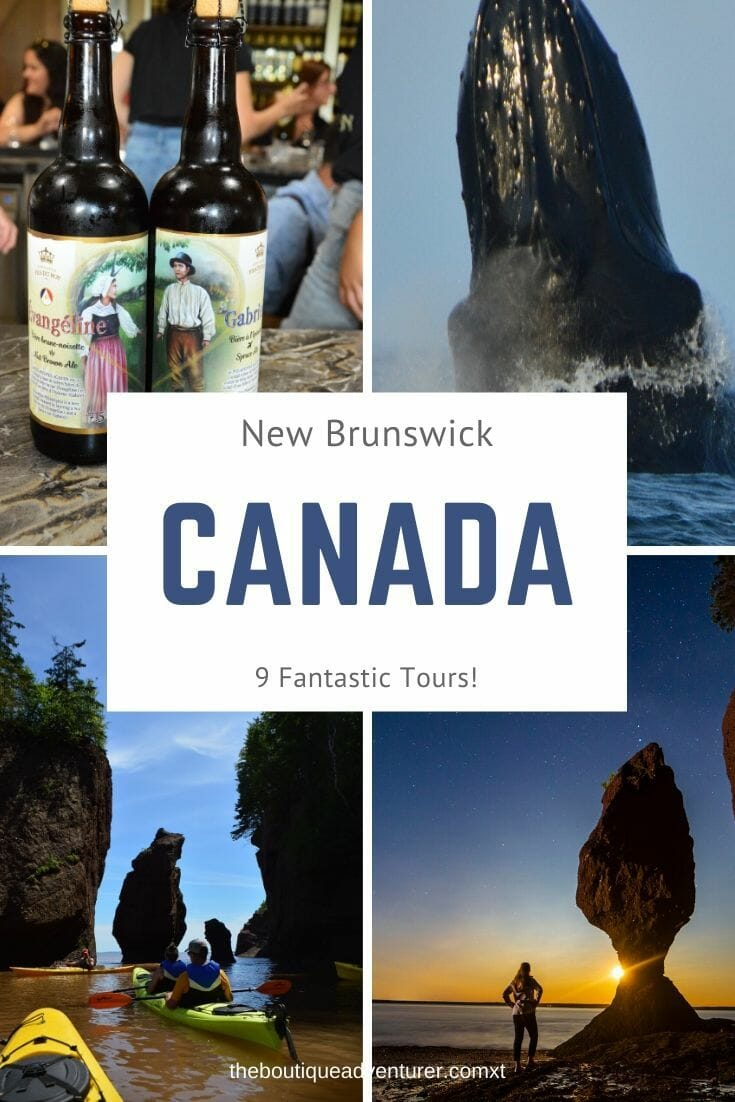 There are some amazing New Brunswick Tours! Here are 9 brilliant NB tours - from a distillery to night photography to reliving life 200 years ago to whale watching - that you won't want to miss! #canada #newbrunswick