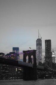 Symbols of Patriotism against the NYC Skyline