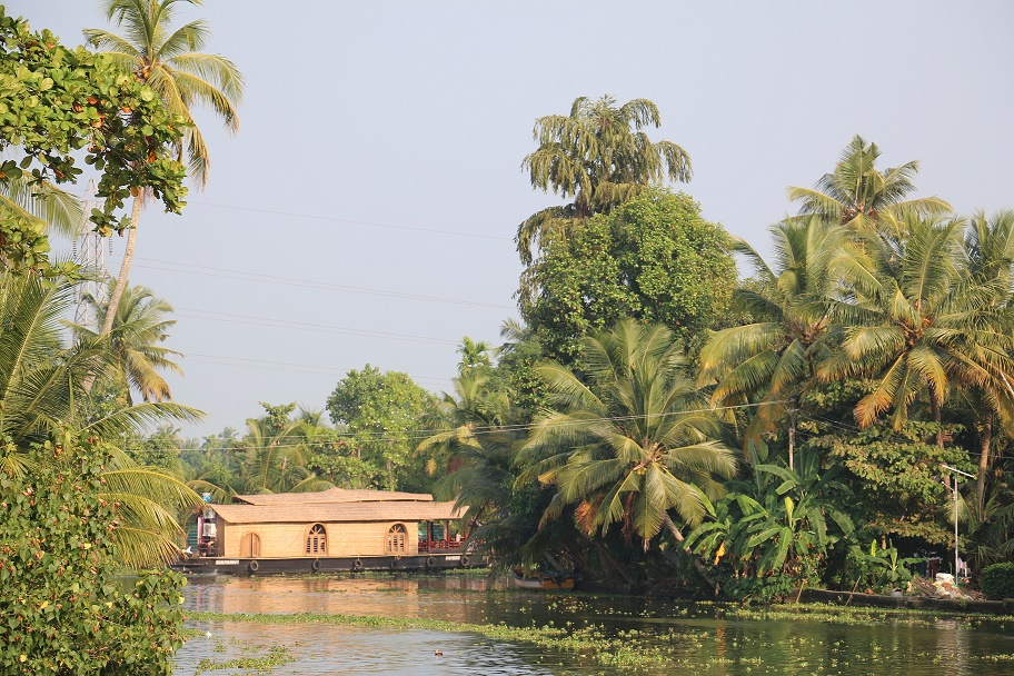 Backwaters_1