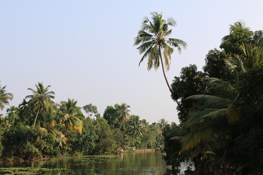 Backwaters_2