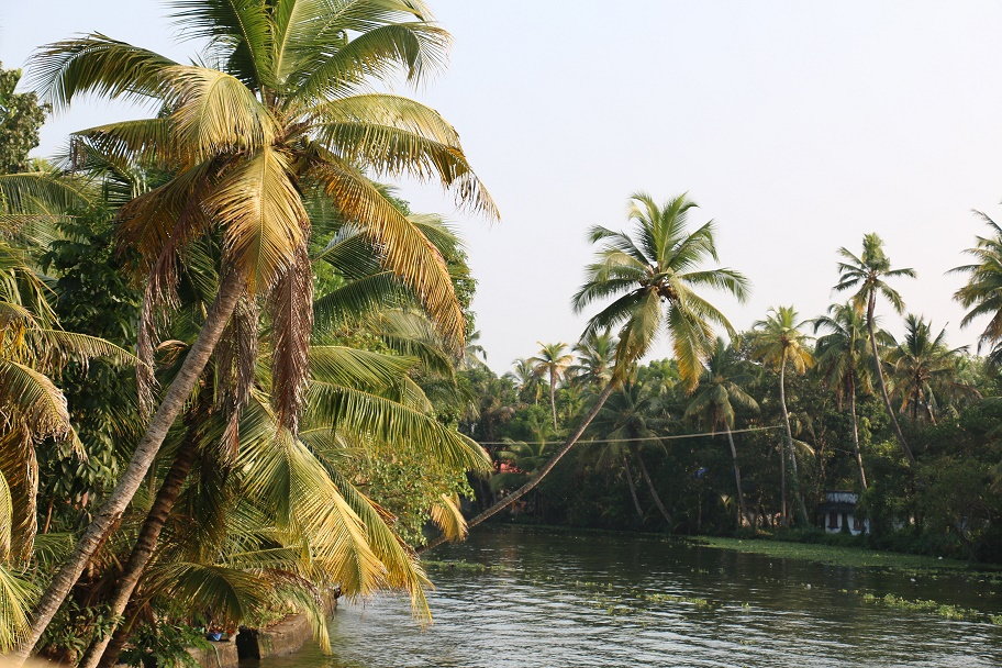 Backwaters_11
