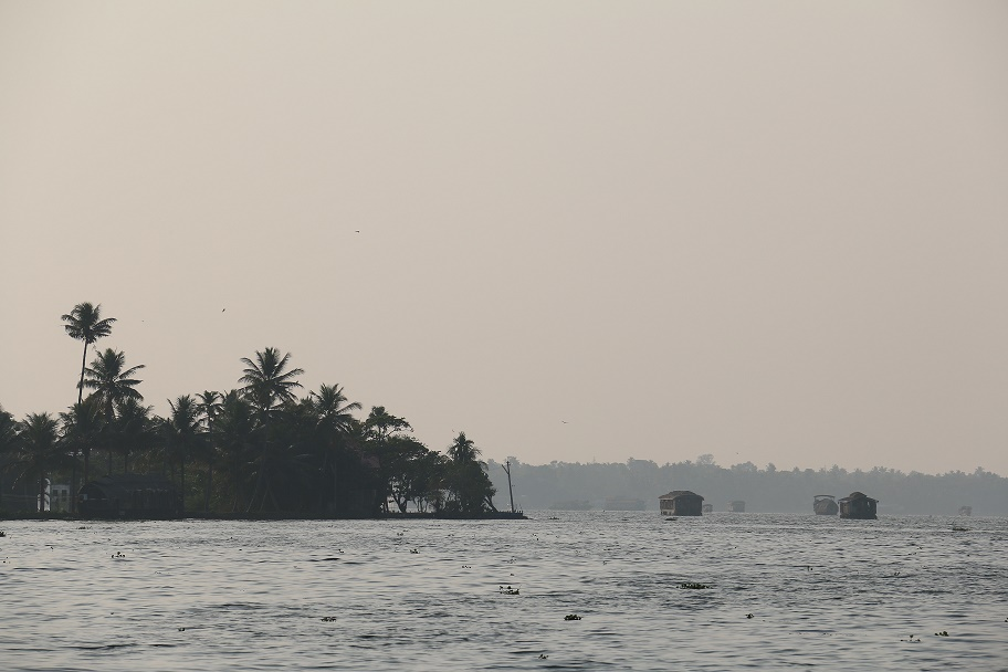 Backwaters_25