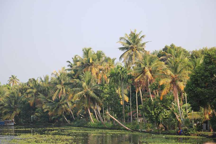 Backwaters_4