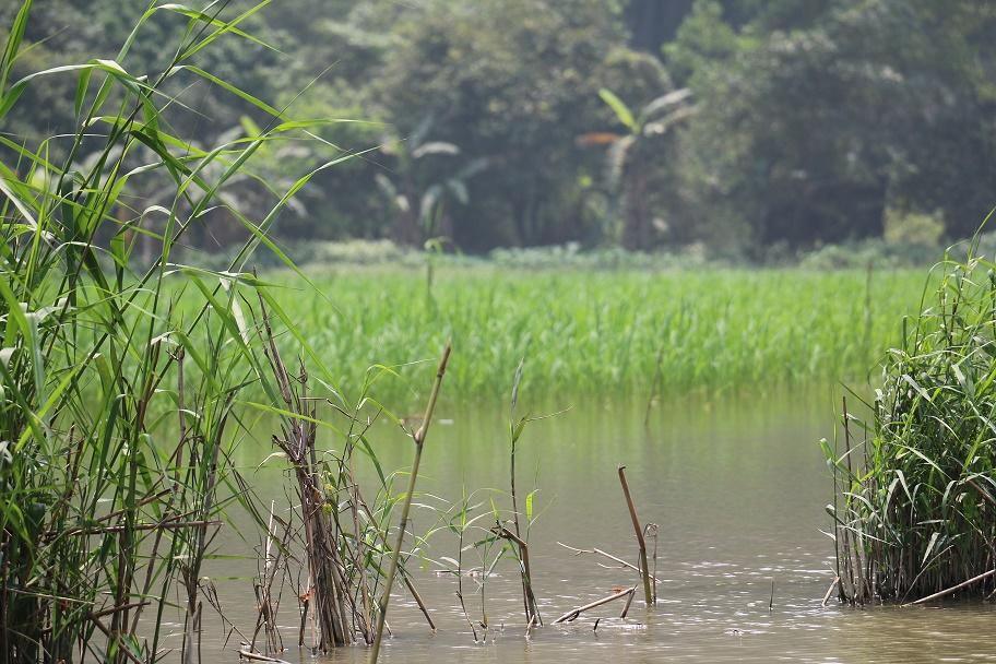 Ninh_Binh_Nationalpark_12_thebraidedgirl