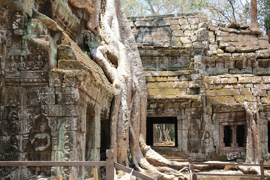 Angkor_Ta_Prohm_4_thebraidedgirl