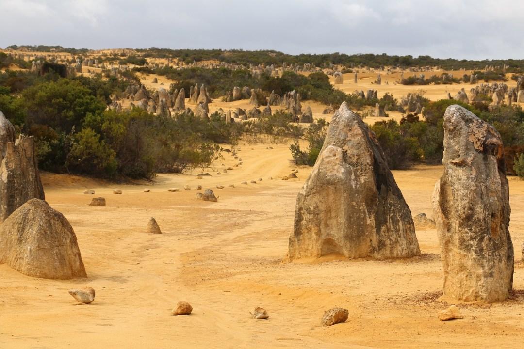pinnacles-desert-6-thebraidedgirl