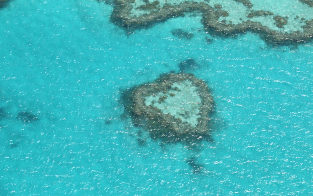 Rundflug über das Great Barrier Reef und die Whitsunday Islands