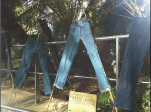 CatClo-treated jeans displayed in Sheffield's Winter Garden. Photograph courtesy of Helen Storey Foundation.