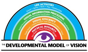 Developmental-model-color (1)