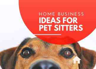 home business ideas for pet sitters