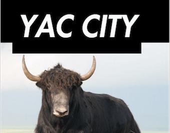 YAC! YAC! YAC! We NEED more YAC!