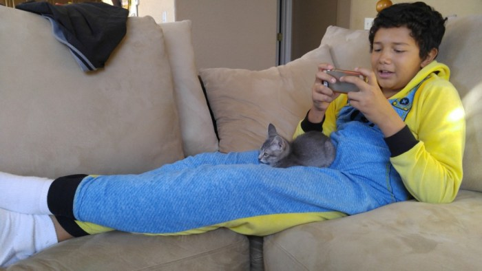 Brandon and Toby relaxing on the sofa.