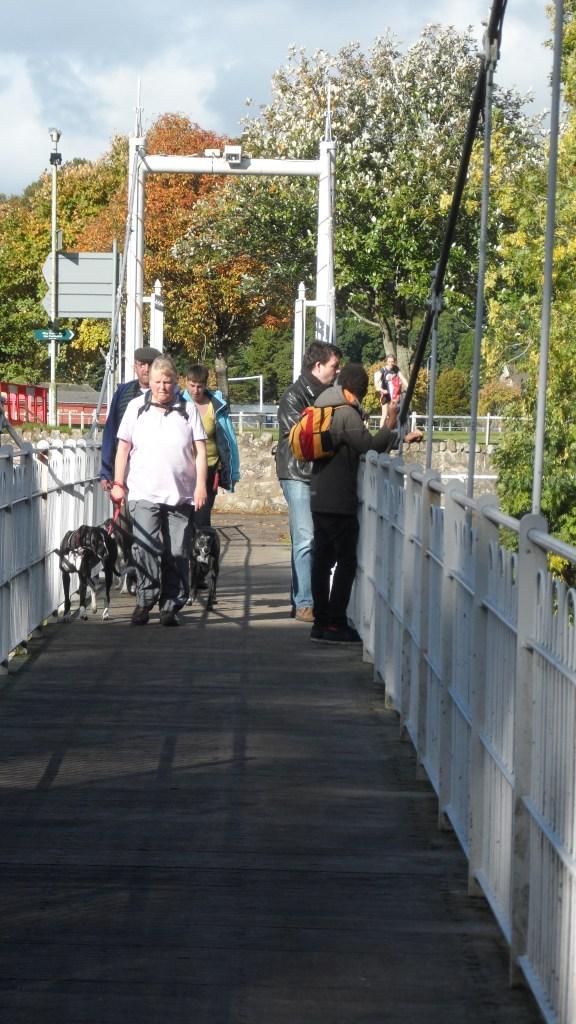 One of the many footbridges.
