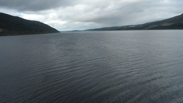 Could it be Nessie?