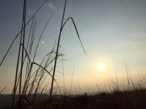grass-sun-twilight-mountain-top-tanang-phandung-camping-thebroadlife