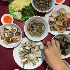 different types of clams/snails on selling on the street but it's really good