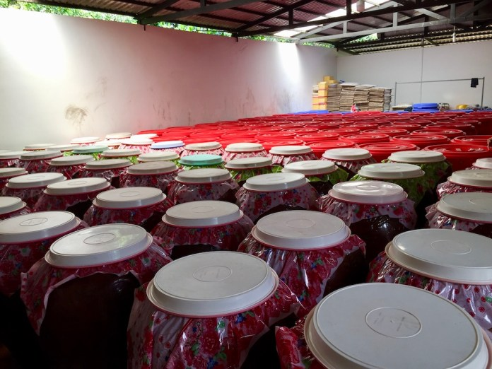 Sim liquor is distilled in barrels at a manufactory, Phu Quoc Island, Vietnam