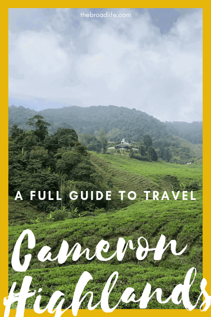 A Full Guide to Travel Cameron Highlands - The Broad Life