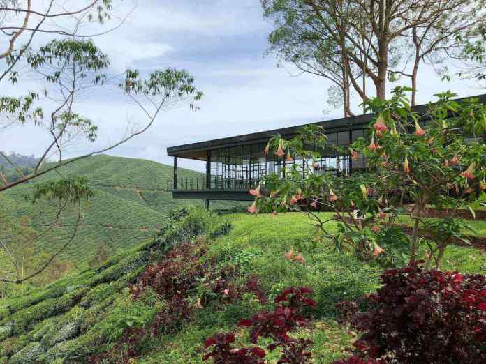 The coffee shop with special architecture at BOH Tea Plantation