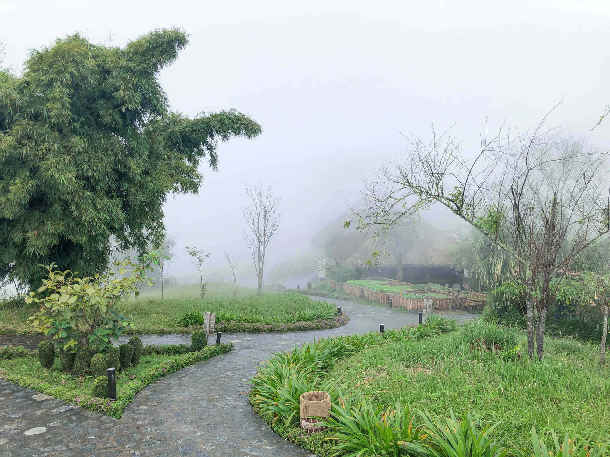 campus in the fog of Topas Ecolodge Sapa